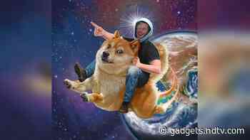 Dogecoin Rides Cryptocurrency Wave to Jump 160 Percent. Elon Musk Eyes Vindication
