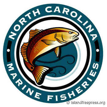 Division of Marine Fisheries urges fishermen to promptly complete license/permit renewals for FY 2022 - Island Free Press