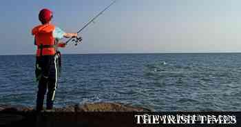Inland Fisheries Ireland unveils coastal species survey - The Irish Times