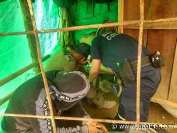 Cuatro mineros intoxicados en Marmato - La Patria.com