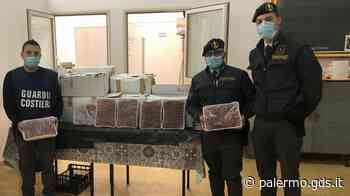 Gamberoni e scampi non tracciati sequestrati a Palermo, la Finanza li devolve in beneficenza - Giornale di Sicilia