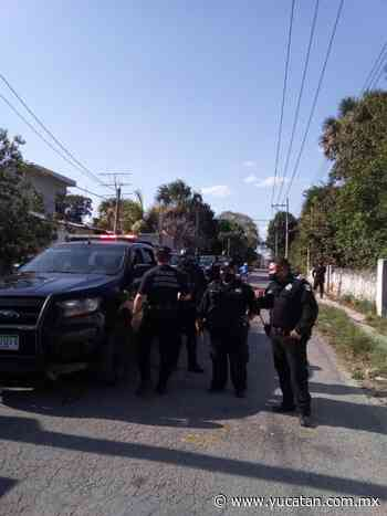 Policías solo 'se quedan viendo' pleito entre vándalos, en Ticul - El Diario de Yucatán