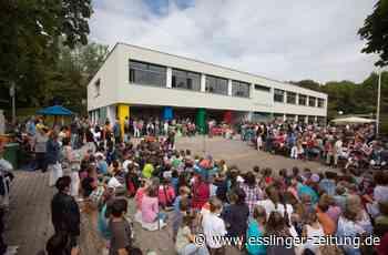 Baumangel: Dämmung an der Plochinger Panoramaschule löst sich - esslinger-zeitung.de