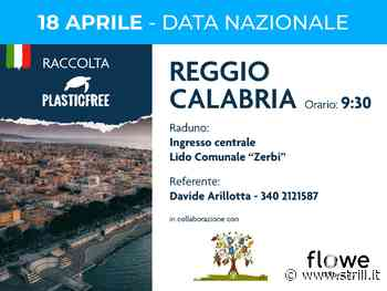 Anche a Reggio Calabria è tutto pronto per il quinto appuntamento firmato PlasticFree - strill.it - Strill.it