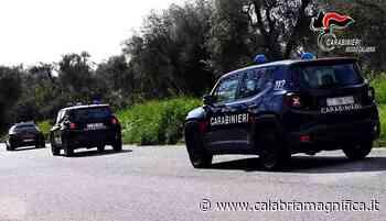 Controlli nelle aziende agricole di Reggio Calabria: sanzioni fino a 14 mila euro - Calabria Magnifica