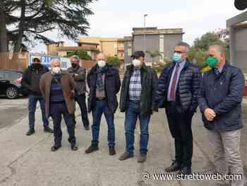 Reggio Calabria: sopralluogo di Giuseppe Marino per verificare i danni da gelo alle coltivazioni di Kiwi [FOTO] - Stretto web