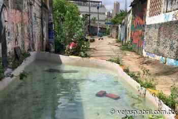 """""""Lago"""" perto da avenida Pompeia vira alvo de discórdia entre vizinhos - VEJA SÃO PAULO"""