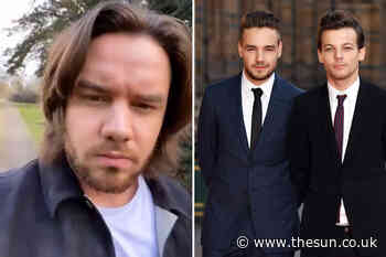 Louis Tomlinson slams One Direction co-star Liam Payne for ignoring his calls telling him 'get your p... - The Sun