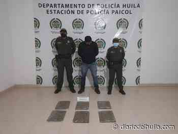 Con 3 kilos de marihuana fue capturado sujeto en Paicol - Diario del Huila