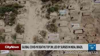 The countries bearing the brunt of global coronavirus deaths - CityNews Toronto