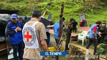 Reincorporados de Farc fueron reubicados en Ituango y cultivarán café - El Tiempo