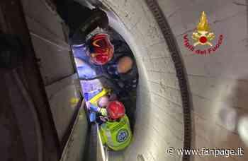 Favaro Veneto, bimba si appoggia all'ascensore e precipita nel vano per metri: illesa per miracolo - Fanpage.it