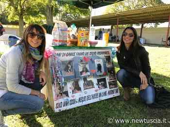 Vitorchiano, proseguono le iniziative a favore degli animali   - NewTuscia