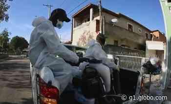 Itupeva e Capela do Alto registram mais de 500 casos de dengue neste ano - G1