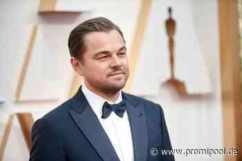 Transformation zum größten Hottie: Durch die Jahre mit Leonardo DiCaprio - PROMIPOOL