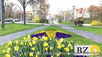 Wolfenbüttels Haushaltslage ist trotz Corona noch gut