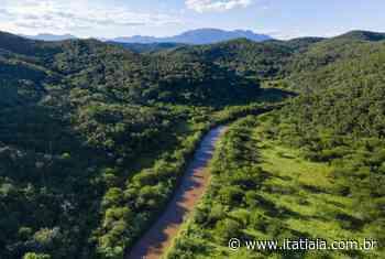Com imagens inéditas, plataforma virtual permite navegar pelo Rio Doce - Rádio Itatiaia