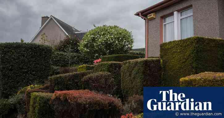 Border Patrol: Edinburgh's suburban hedges – in pictures