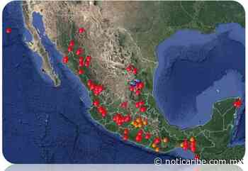 Reportan tres incendios forestales activos en Cancún, Playa del Carmen y Lázaro Cárdenas - Noticaribe