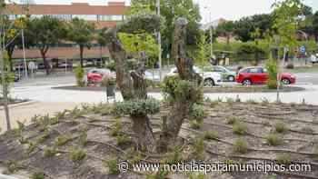MÓSTOLES/ Habilitan una nueva zona estancial entre las calles Granada y Pérez Galdós - Noticias Para Municipios