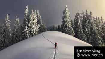 Skifahrer gehen auf einmal zu Fuss den Berg hoch – die Sportartikelbranche freut's