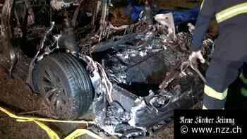 Elon Musk: Autopilot war bei tödlichem Tesla-Unfall in Texas nicht eingeschaltet