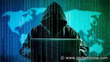 More urban Indians suffer payment app frauds, identify thefts: Report