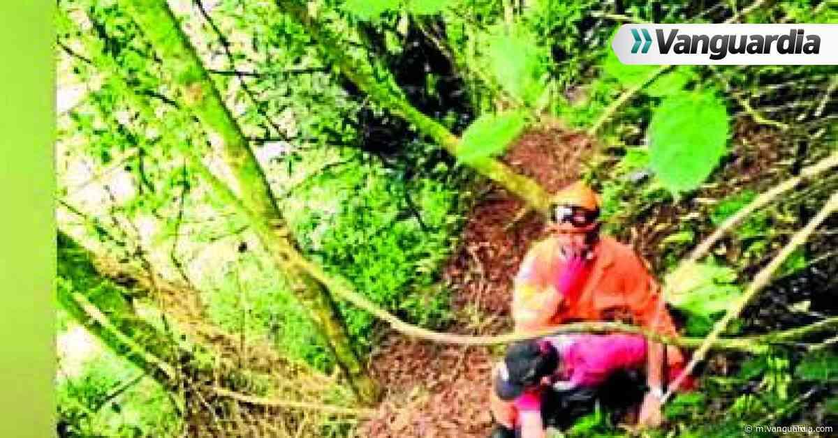 Tres adultos mayores se extraviaron en un sendero de El Socorro - Vanguardia