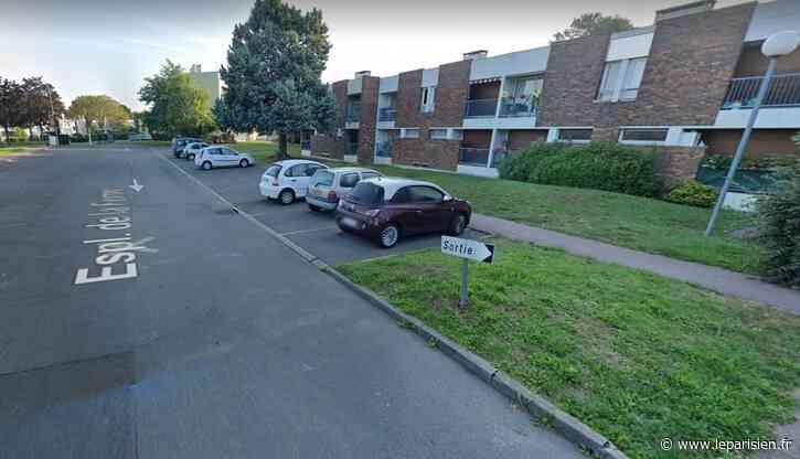 Essonne : un homme tué par arme blanche à Boussy-Saint-Antoine - Le Parisien