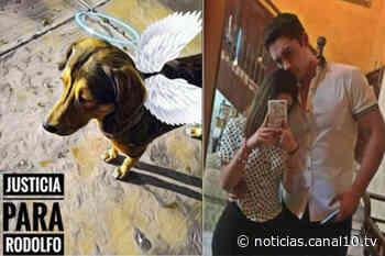 "Perro ""Rodolfo Corazón"" ataco a novia del joven que lo mato - Canal 10"