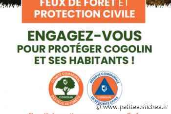 Economie - Cogolin va créer une réserve communale - Petites Affiches des Alpes-Maritimes - annonces légales, appels d'offres, ventes aux enchères... - LES PETITES AFFICHES