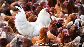Stetten am kalten Markt: Die Tiere sollen jetzt registriert werden - Schwarzwälder Bote