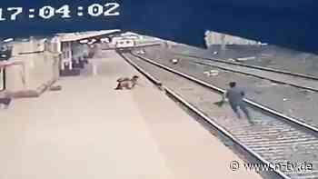 Junge stürzt in Gleisbett: Bahnarbeiter rettet Kind vor Schnellzug