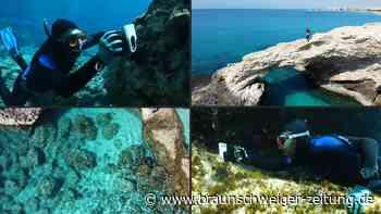 Klimawandel gefährdet Korallen im Mittelmeer