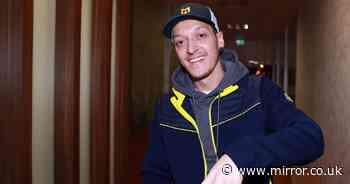 Mesut Ozil 'buying football club' alongside Hollywood stars Kate Upton and Eva Longoria - Mirror Online