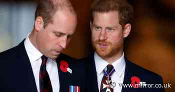 William and Harry 'playing out the dynamic of their parents Charles and Diana'