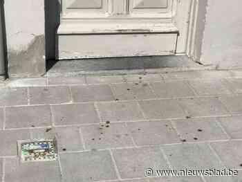 Slachtoffer steekpartij na liefdesaffaire zelf deels schuldi... - Het Nieuwsblad