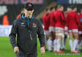 Peel to return to Scarlets, Sherratt back in Cardiff - Welsh Rugby Union