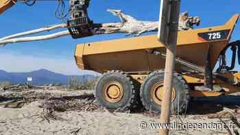 Aménagement : Remise en état de la plage d'Elne au Bocal du Tech - L'Indépendant
