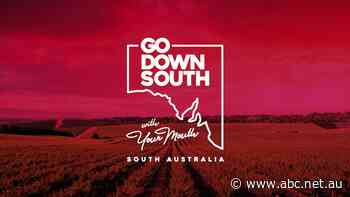 SA Tourism Commission 'in discussions' with Taste Down South campaign over use of film library