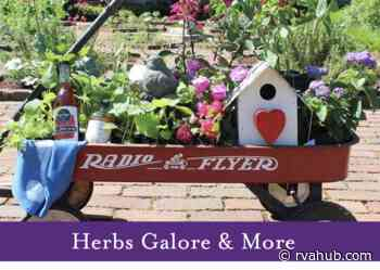 Herbs Galore & More at Maymont - rvahub.com