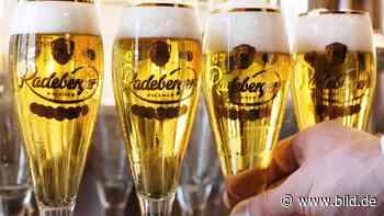 Zu geringer Bier-Konsum!: Radeberger will 260 000 Euro von Vellmar | Regional - BILD