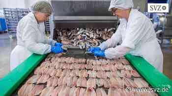 400.000 Euro Schaden: Brand bei großem Fischverarbeiter in Sassnitz | svz.de - svz.de