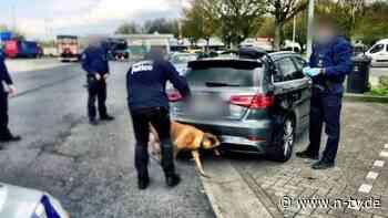 Mehr als 200 Festnahmen: Europol gelingt Schlag gegen Diebesbanden