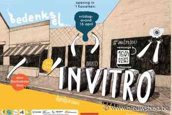 Derde kunstparcours Invitro scoort<BR />