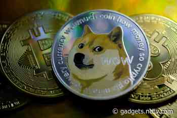 Dogecoin Price Slumps After Hashtag-Fuelled Surge to Record High