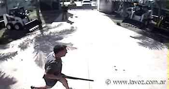 Imputan y suspenden al director del Hospital de Villa del Rosario por matar a un perro en una fábrica - La Voz del Interior