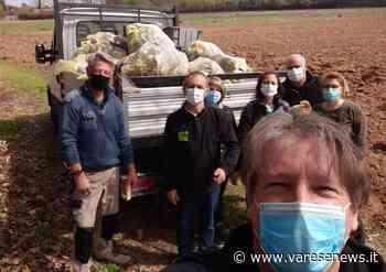 Cittadini in difesa di via Caboto a Fagnano Olona, soli contro gli incivili - VareseNews - Foto - Varesenews