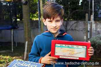 Gallische Feldwespe mag keine Süßspeisen - Gottenheim - Badische Zeitung