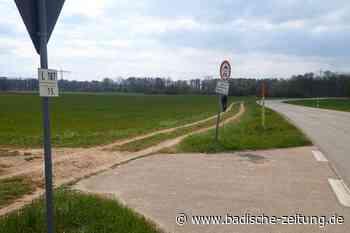 Die Lücke im Radweg zwischen Gottenheim und Buchheim soll geschlossen werden - March - Badische Zeitung